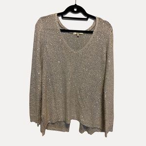 Silver Sequin Sweater wit Slit Back